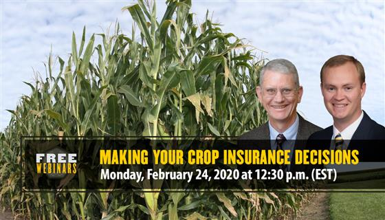 Purdue Making Your Crop Insurance Decisions Webinar, February 24 at 12:30PM. Register Today!