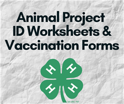 Animal ID Worksheets & Forms