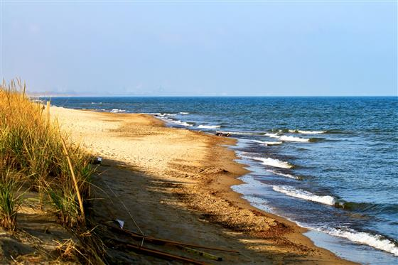 Sandy beach with water