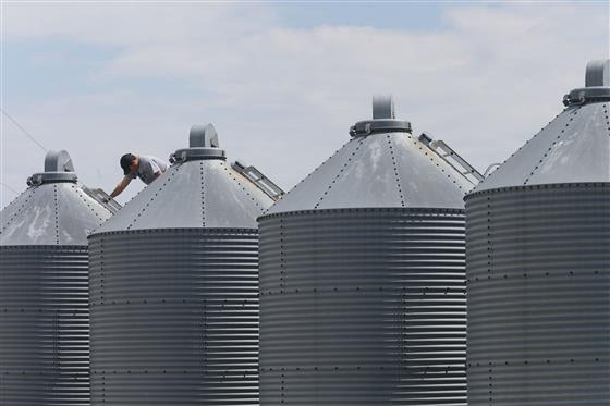 Grain Bin for corn and soybean storage.