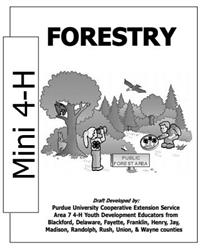 Mini 4-H Forestry