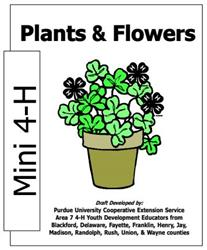 Mini 4-H Plants & Flowers