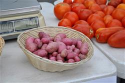 Tomatoes and potatoes for sale at a farmers' market
