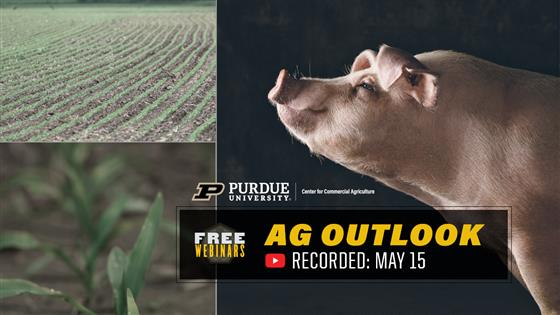 Purdue Ag Outlook Webinar Recording Available