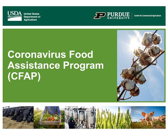 Coronavirus Food Assistance Program Application Details