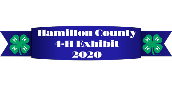 4-H Exhibit Logo