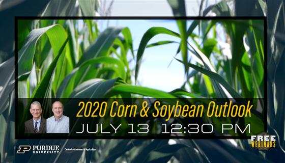 Purdue 2020 Corn and Soybean Outlook Webinar, July 13 at 12:30 pm EDT. Register Today!