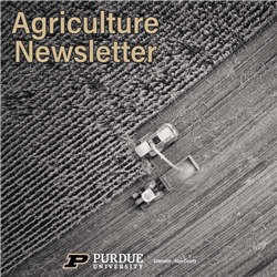 Agriculture Newsletter