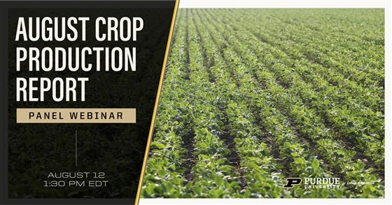 August Crop Production Report Panel Webinar, August 12
