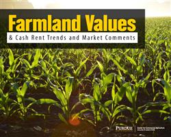 Purdue Farmland Value