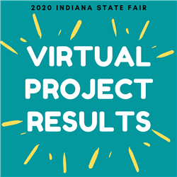Virtual Project Results