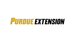 Extension Homemakers
