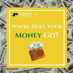 Where Does Your Money Go
