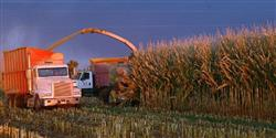 Be Safe this Harvest Season