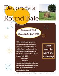 Round Bale Decorating Contest Flyer