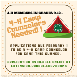 4-H Camp Counselors Needed