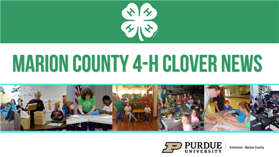 (banner image - Marion County 4-H Clover News)