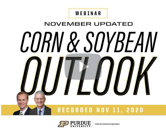 Purdue November update on the corn and soybean outlook webinar recording available