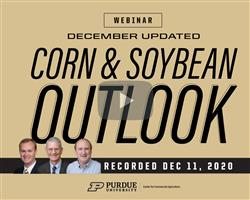 Purdue December update on the corn and soybean outlook webinar recording available