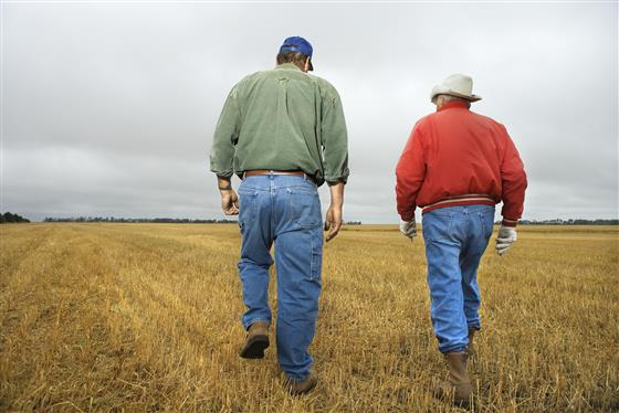Two men walk in a field.