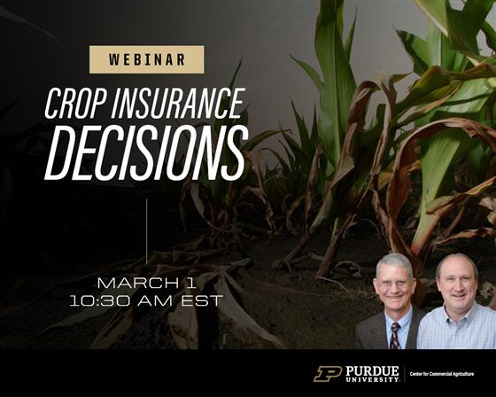 Making Your 2021 Crop Insurance Decisions Webinar, March 1 at 10:30 a.m. ET