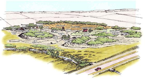 Image shows the campus landscape for the Turtle Mountain Recovery Center in North Dakota, designed b