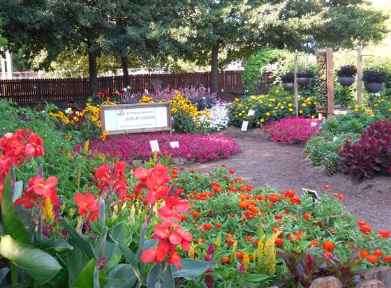Bright flower displays and hanging planters are shown at the Purdue Extension Marion County demonstr