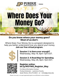 Where Does Your Money Go Flyer