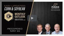 May corn and soybean outlook webinar recording available