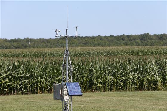 Weather station next to field of corn at Purdue Agriculture Center.