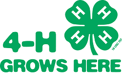 4-H Jr. Leaders Grow Leadership!