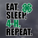 4-H Decal