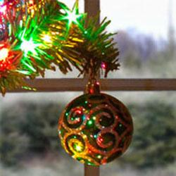Christmas tree with ornament.