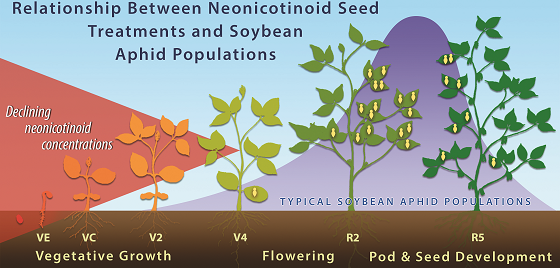 In this illustration, the red-shaded area represents the relative concentration of a neonicotinoid p