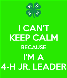 Jr. Leaders