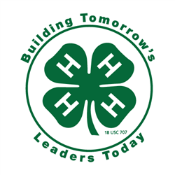 Building Tomorrow's Leaders