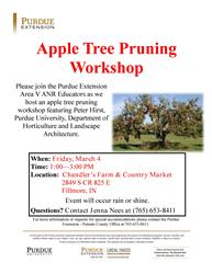 Apple Tree Pruning Flyer