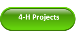 4-H project