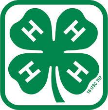 2016 Mini 4-H Day Camps