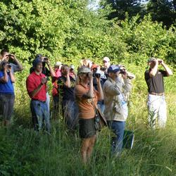 Teachers on field tour, The Nature of Teaching Workshops