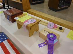 4-H Woodworking Project